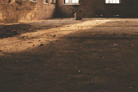 dust_thumbnail